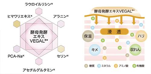 アルケミーには6つの美容成分が追加配合