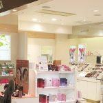 【アテニア】クレンジングの店舗・販売店を調べたらお得な事実が判明!